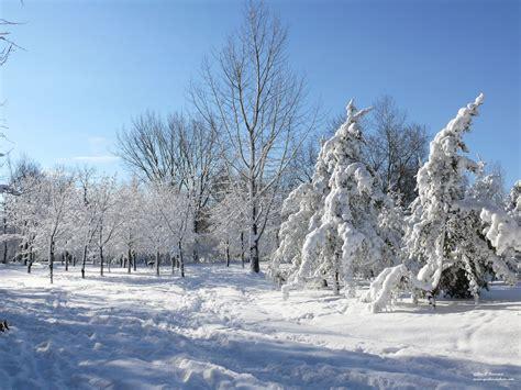 foto de Paysage d'hiver québécois Fonds d'écran HD