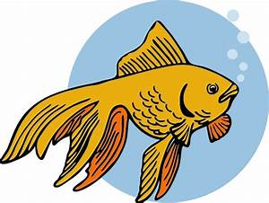 Gold Fish Clip Art - Cliparts.co