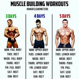 Muscle Building Workouts By  Musclemonsters   Visit The Link In My Bio To Claim Your Free Copy