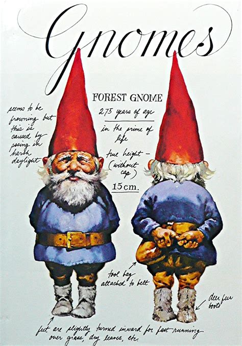pamphlets  destiny gnomes