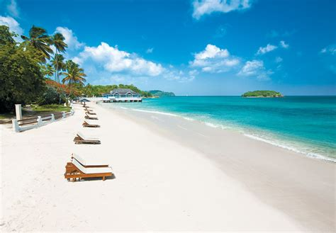 cap cuisine programme sandals halcyon resort spa designer travel