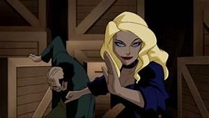 DCAU: Batgirl vs Black Canary - Battles - Comic Vine
