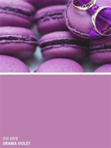 sherwin williams purple paint color drama violet sw