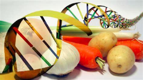 scienza e tecnologia alimentare e se fossero gli ogm a salvare la nostra tradizione