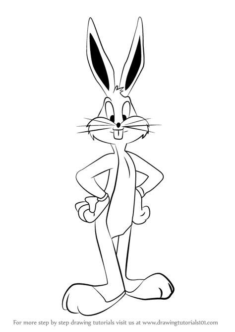 learn   draw bugs bunny  looney tunes looney
