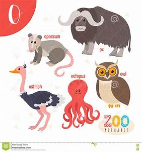 opossum cartoons illustrations vector stock images With animals with the letter o in their name
