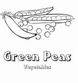 Coloring Pages Peas Vegetable sketch template
