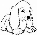 Coloring Dog Prairie Popular sketch template
