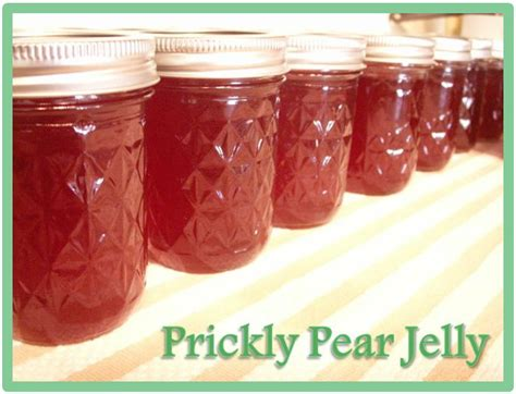 prickly pear jelly a bit backward prickly pear pioneers canning tucson style