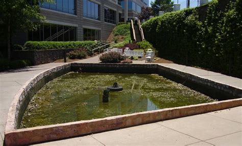 Aquascape Environmental by Installation And Maintenance Aquascape Enviromental