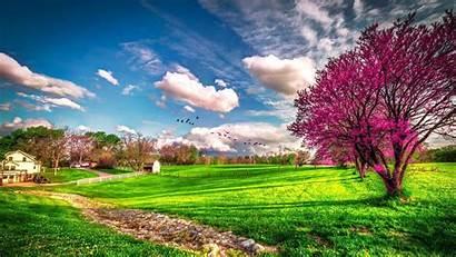 Nature Landscape Spring Rate