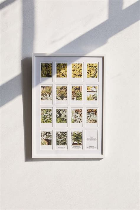 instax mini  gallery picture frame urban outfitters