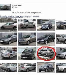 Achat Voiture Pour Export : photo pour l 39 achat d 39 une voiture des dauphins morts offerts ~ Gottalentnigeria.com Avis de Voitures