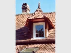 habillage chien assis pvc fen 234 tres sur toit