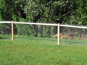 Outdoor fencing for dogs fence ideas for Outdoor dog fence ideas