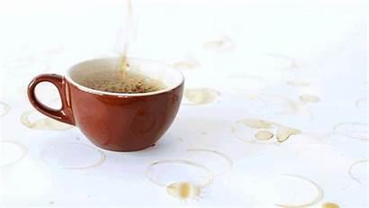 Coffee Hour Evolution Mailchimp