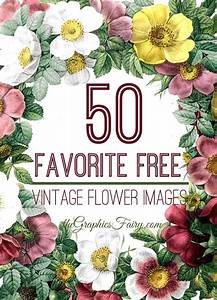 50 Favorite Free Vintage Flower Images! - The Graphics Fairy