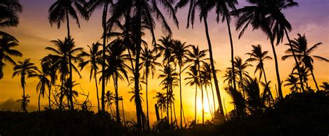 hawaii state holidays publicholidaysus