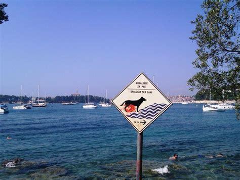 Dubrovnik Spiagge Vicino Al Porto by Spiagge Per Cani In Croazia Croazia Info