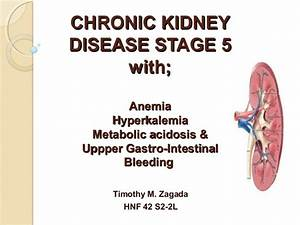 Chronic Kidney disease Diet Therapy