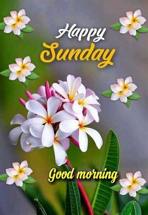 sunday good morning images quotes pics wishes  hindi