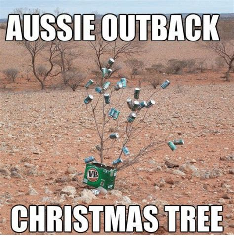 Aussie Memes - funny outback memes of 2017 on sizzle runner