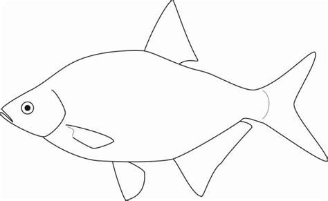 Kleurplaat Vis Simpel by Nieuw Kookboek Zoetwatervis Oogsten Zonder Zaaien