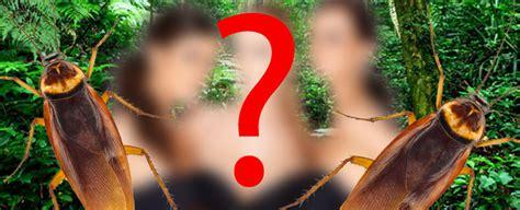 Wer Zieht Ins Rtldschungelcamp 2015?