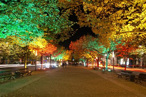 The Famous Unter Den Linden  Germany Travel Guides