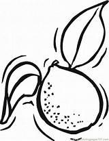 Lemons Limes Coloringpages101 sketch template