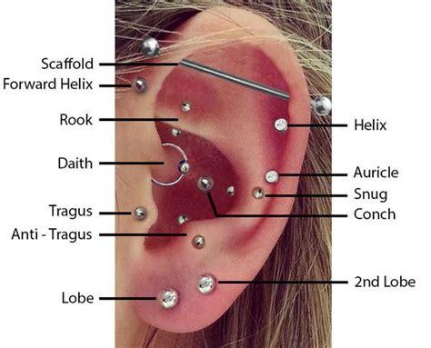 top ear piercings bmg body jewellery