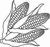 Coloring Vegetables Pages Corn Clipart Preschool Printables Worksheets Fruits Kindergarten sketch template