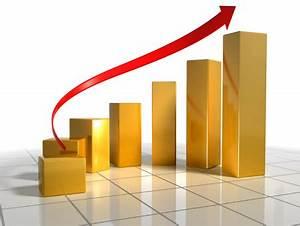 High Profit Margin Business ideas for Premium Pricing