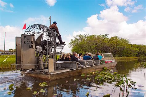 Everglades Propeller Boats by Roadtrip Usa East Coast 13 Everglades Tour Bird On Track