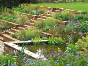 terraced garden designs terraced garden radlett julian tatlock garden design
