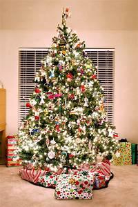 Dónde comprar tu árbol de navidad en Londres   El Ibérico