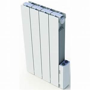 Radiateur Delonghi A Inertie Fluide : radiateur a inertie fluide radiateur lectrique inertie ~ Premium-room.com Idées de Décoration
