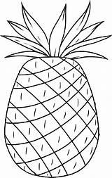 Pineapple Coloring Hawaii Luau Printable Cayenne Smooth Template Hawaiian Aloha Templates Hawii Popular Birthdayprintable Coloringhome sketch template