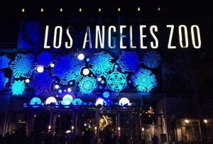 zoo lights coupons california activity guide events festivals shows