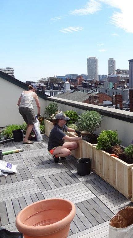 boston rooftop garden design planting   captured garden