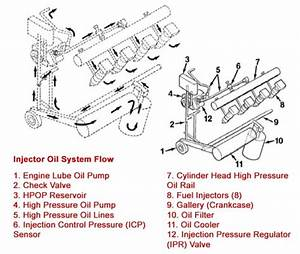 7 3 Powerstroke Hpop  U2013 Ultimate Buyer U2019s Guide