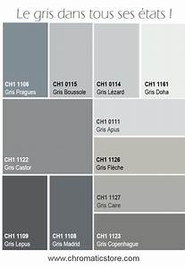 les 25 meilleures idees de la categorie salon gris sur With awesome peinture couleur lin nuancier 8 les 25 meilleures idees de la categorie nuancier tollens