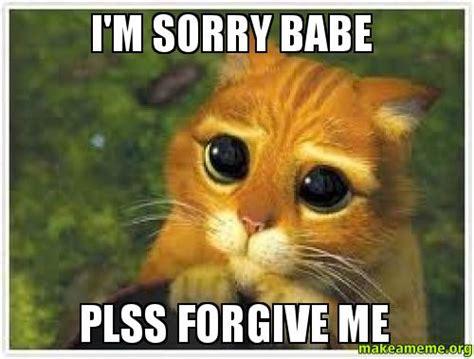Im Sorry Memes - i m sorry babe plss forgive me make a meme