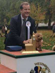 MP Charlie Elphicke's dog has lucky escape in St Margaret ...