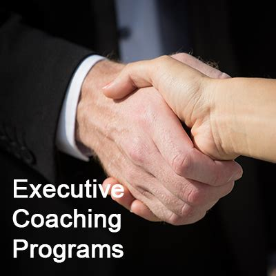 executive coaching programs evolution management