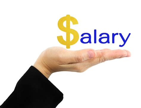 With Salaries by Bank Branch Manager Salaries Average Salary India Pay