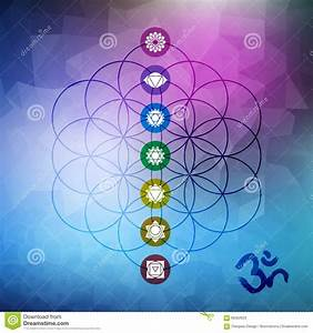 Sacred Geometry Flower Of Life With Chakra Icons Stock ...
