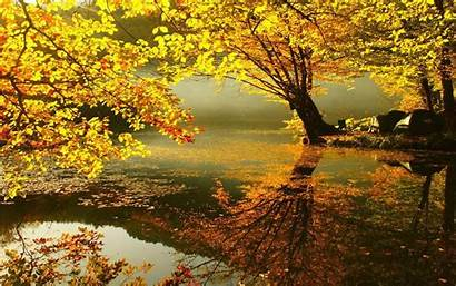 Autumn Wallpapers 4k Apk Android Personalization