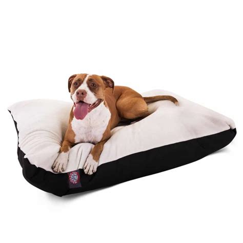 best orthopedic beds for large dogs review majestic pet rectangle pet bed dogs recommend