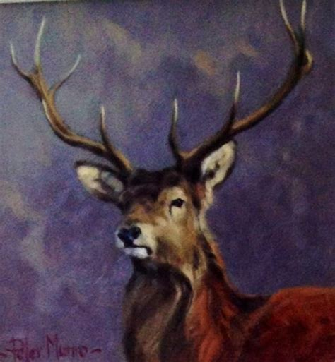 stag paintings images  pinterest deer oil